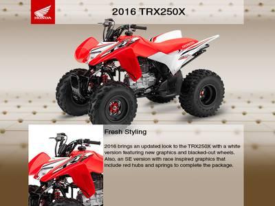 2016 Honda® TRX250X SE   Planet Powersports   Coldwater, MI